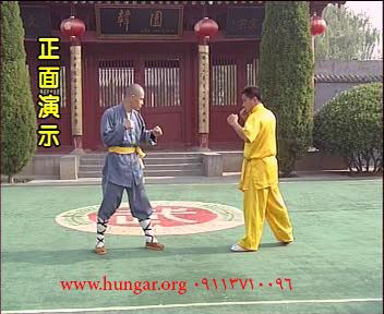 سری سی دی آموزش شائولین چین نا