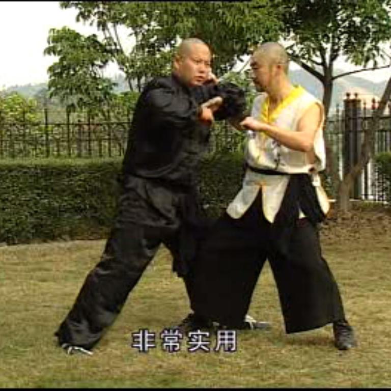 آموزش سبک هونگ