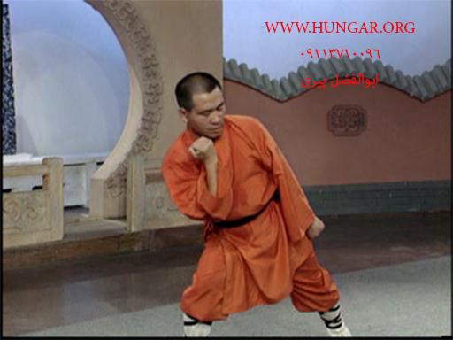 آموزش فرمـ معبدی شائولین پاو چوان