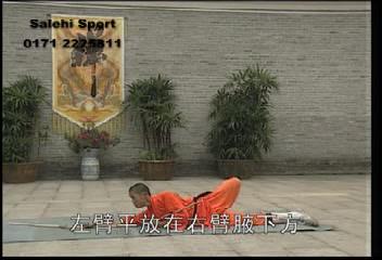 آموزش فرمـ سانچیکو معبدی
