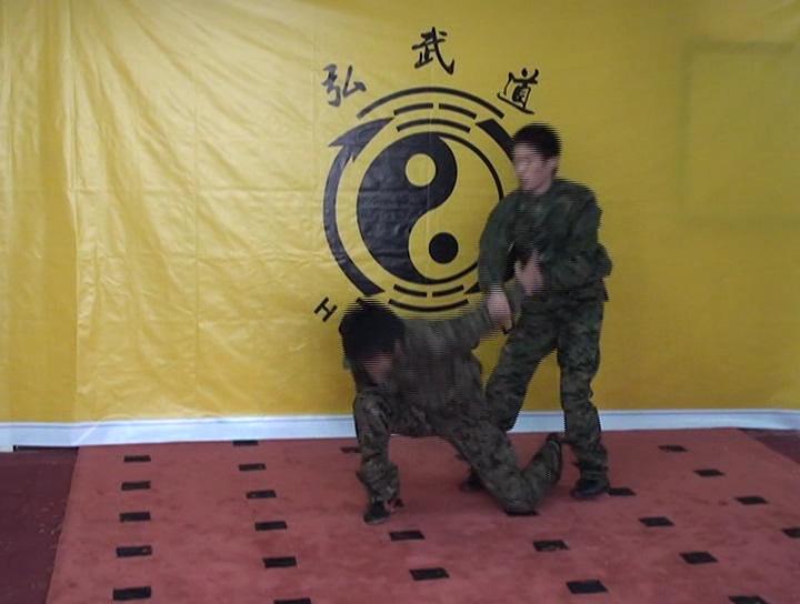 سی دی سبک دفاع شخصی هونگ وودو