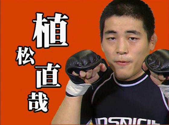3 سی دی آموزشی مبارزه mma