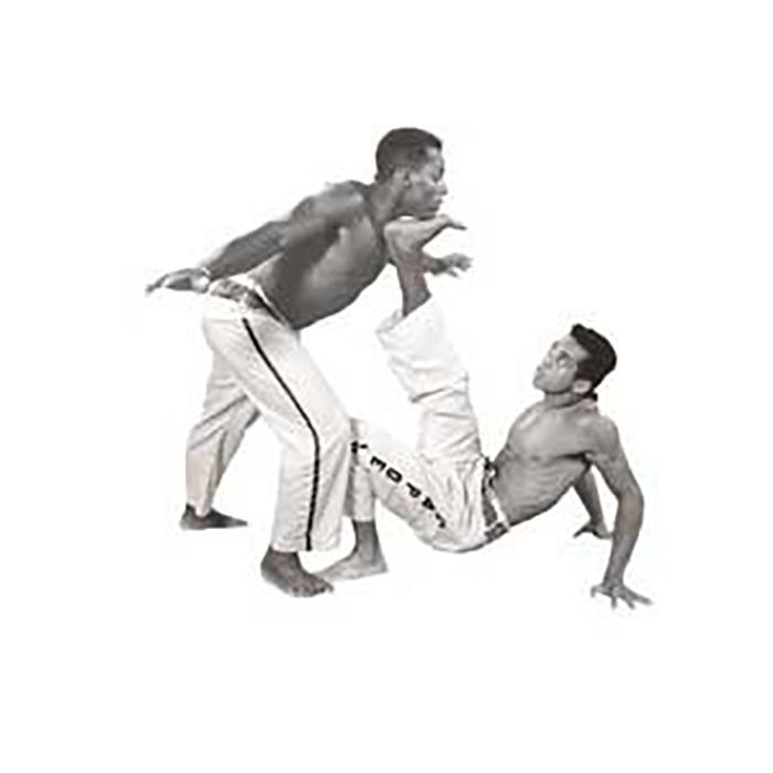 سی دی آموزشی سبک کاپورا برزیل 8 سیدی
