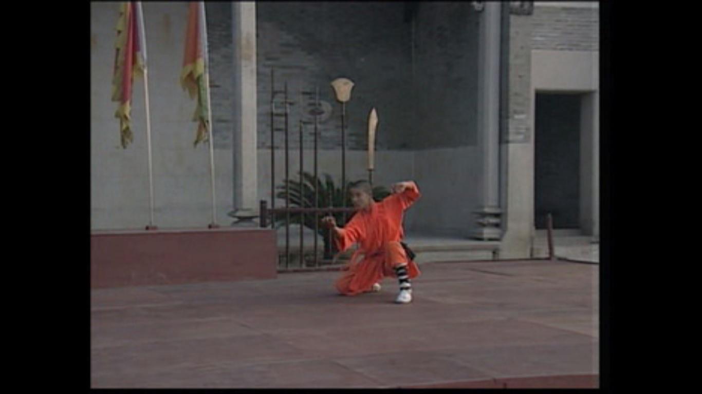 سی دی آموزشی فرمـ یوزپلنگ معبد شائولین
