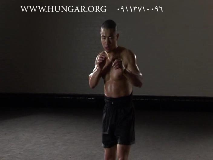 سی دی آموزشی شائولین واریو تکنیکهای مبارزهای دست و پا شائولین برای فایت ساندا